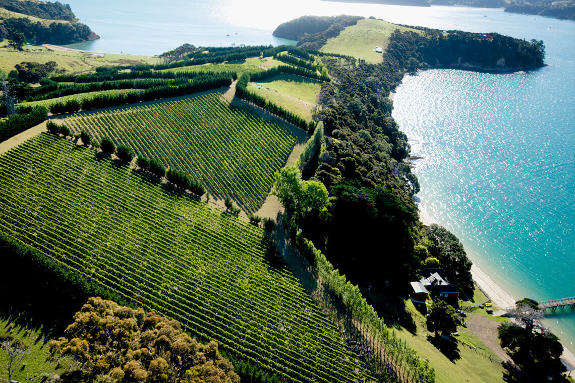 Man O' War Estate on Waiheke Island