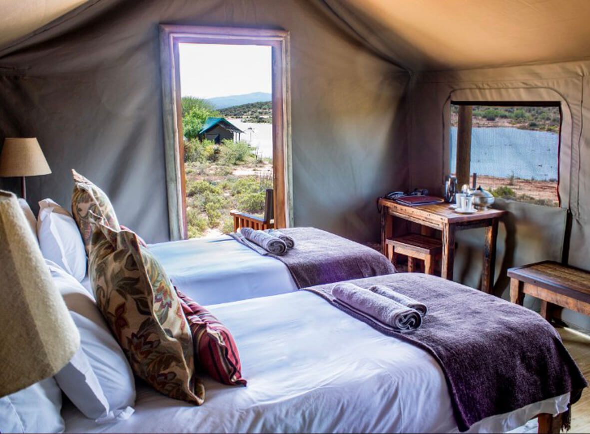 luxury tents overlook the watering hole where on can truly be immersed in the Karoo experience | Photo courtesy of Buffelsdrift