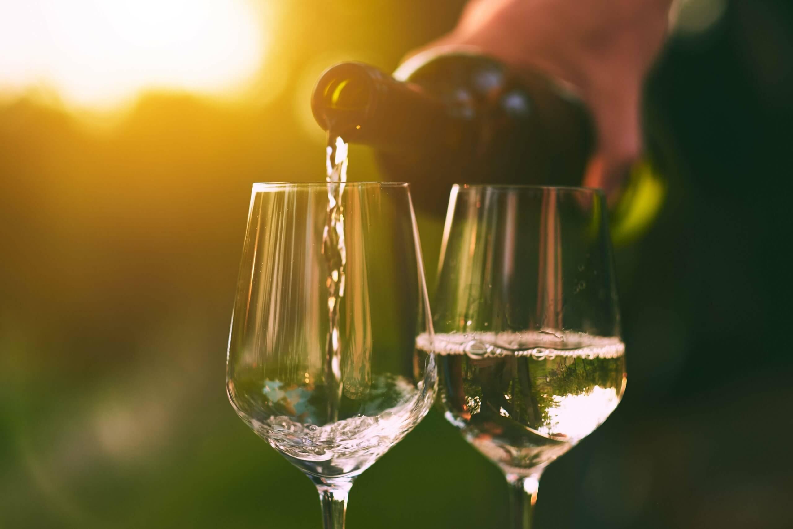 Sip & Read | Chardonnay