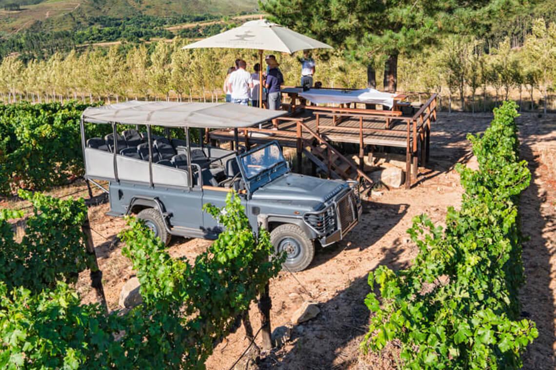 Waterford Wine Safari