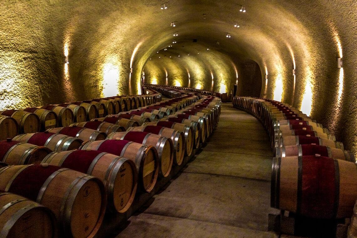 Sip & Read | Cellaring wine
