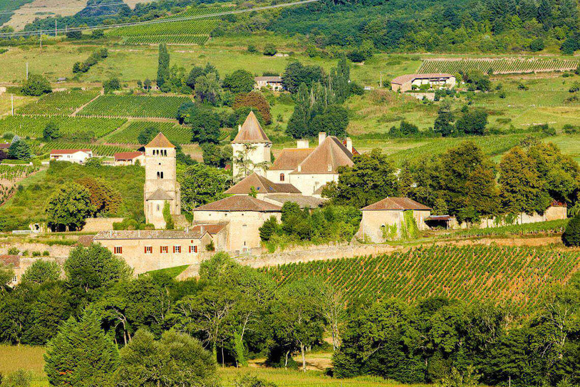 Sip & Read   Burgundy France